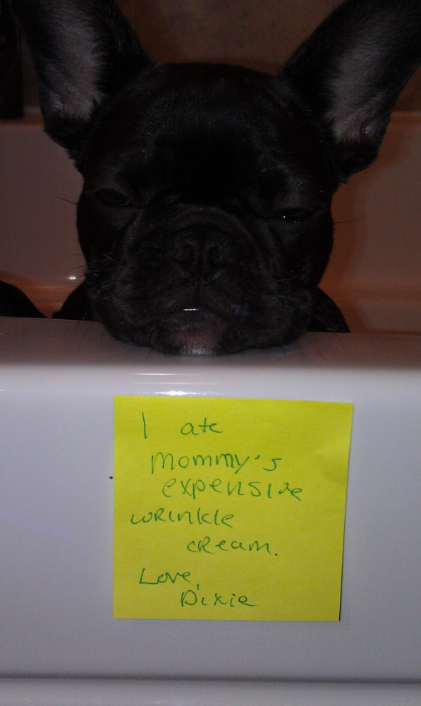 I Ate Mommys Expensive Wrinkle Cream