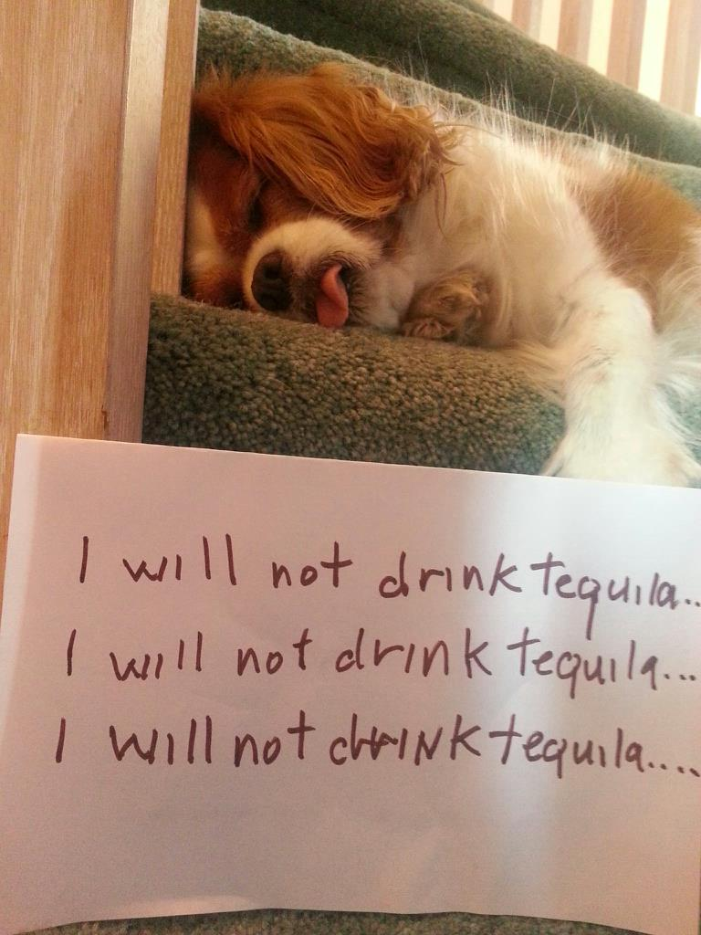 Clothes fall her make off tequilla