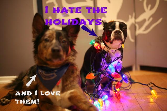 I-hate-holidays
