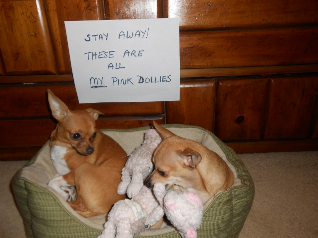 My-Pink-Dollies