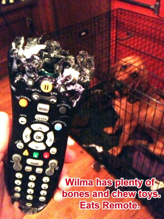 Wilma-Remote