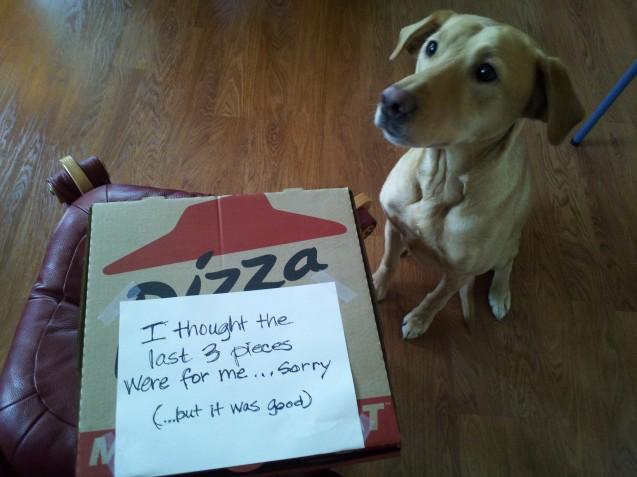 Kit-Pizza