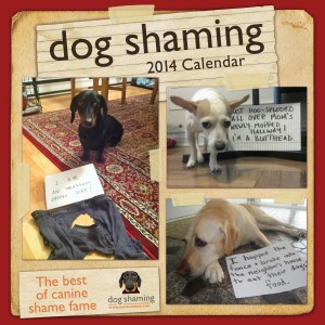 Dog Shaming 2014 Wall Calendar