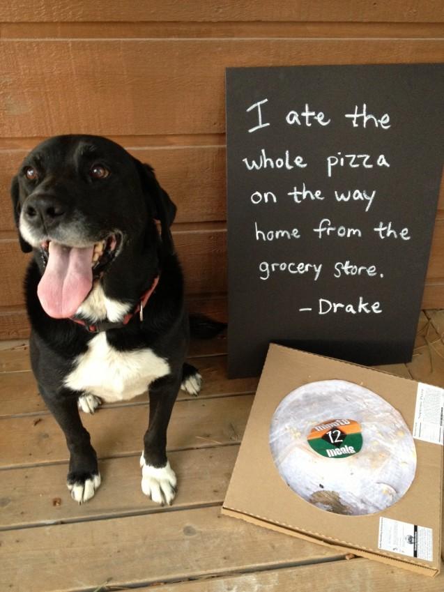 DrakePizza