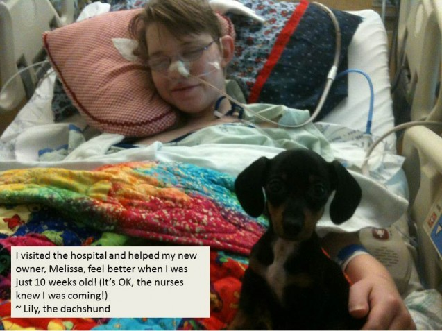 Lily-and-Melissa-in-the-hospital-for-Dogshaming