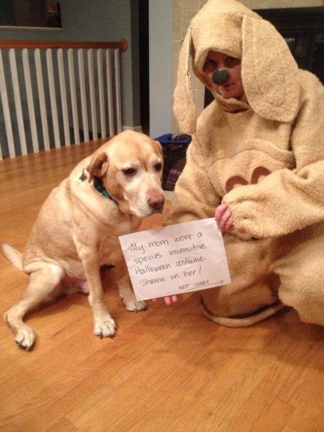 Ownershaming
