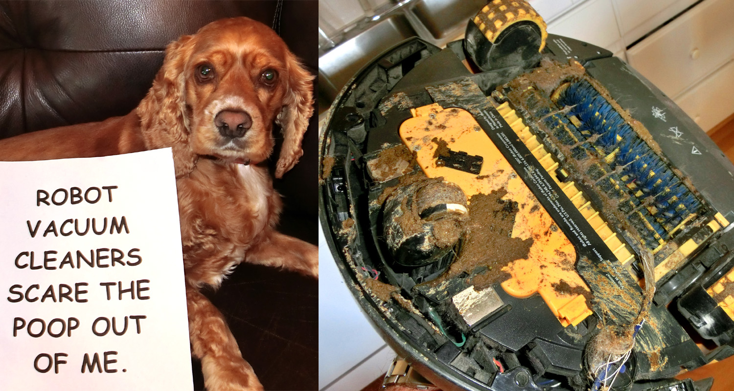 That Will Stop The Evil Roomba Dogshaming