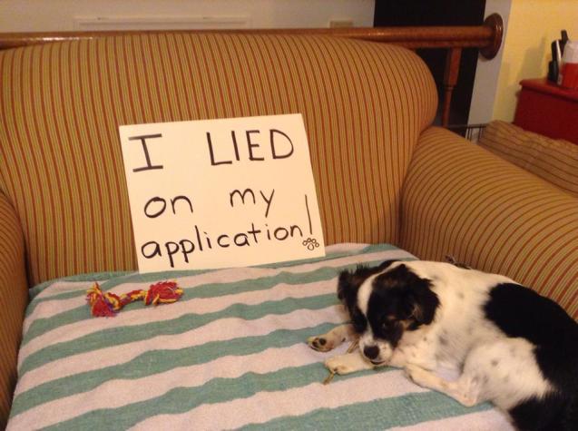I-lied