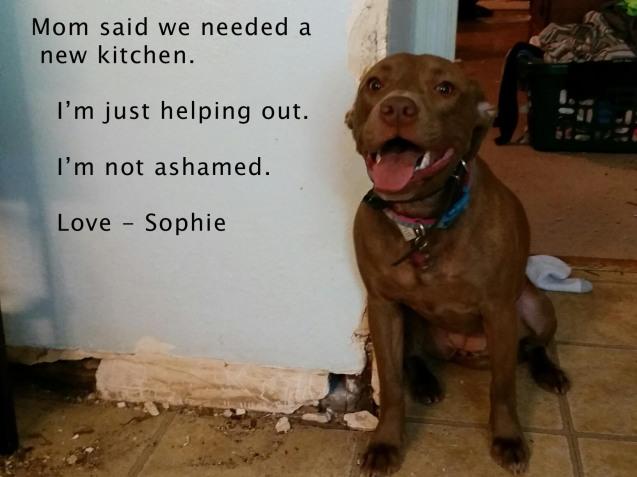 sophie-bad