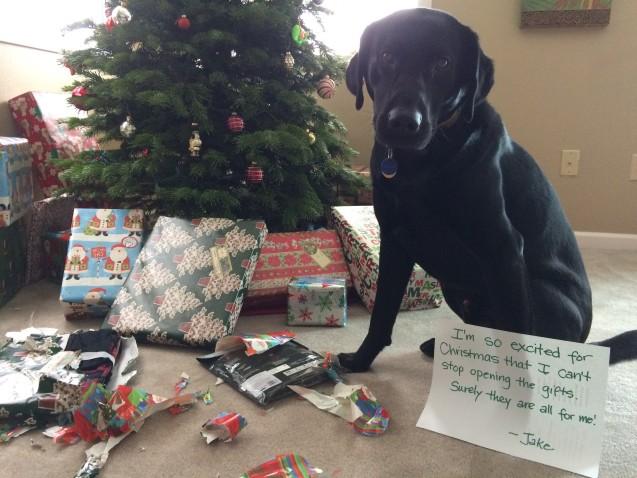 Jake-gifts