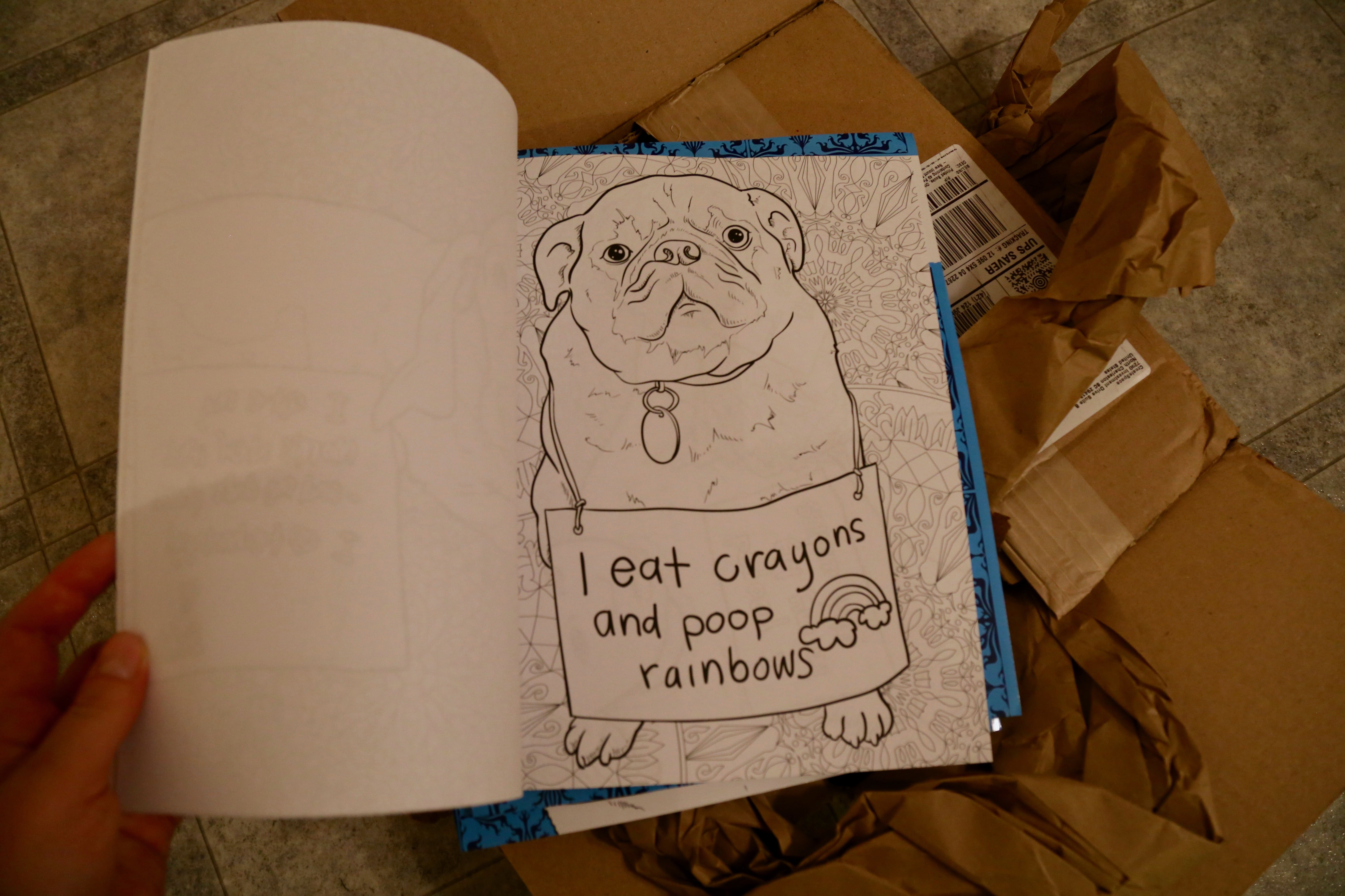 82+ Dog Shaming Coloring Book Free